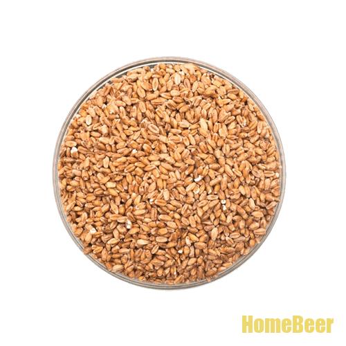 Пшеничный солод