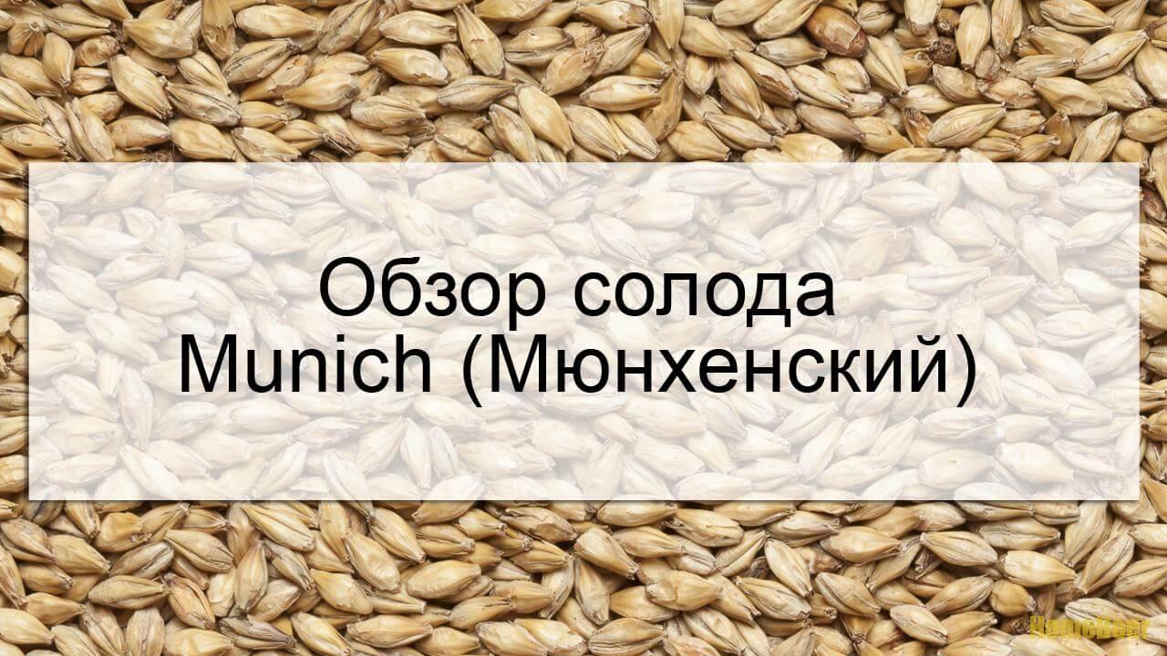 видеообзор солода munich