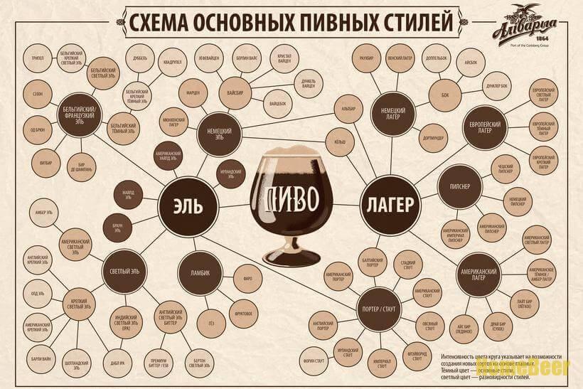 Коассификатор видов продукции пиво