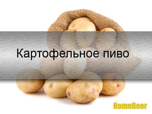 Рецепт картофельного пива